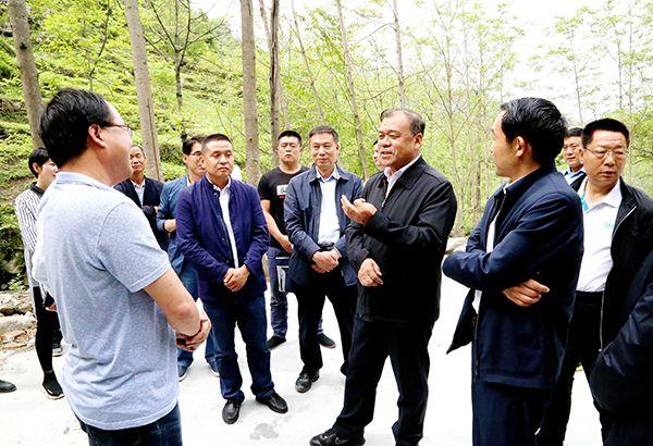 马青林副主任在武都区调研脱贫攻坚工作