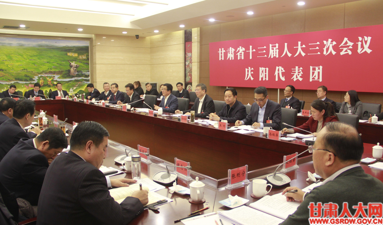 庆阳市代表团审议政府工作报告