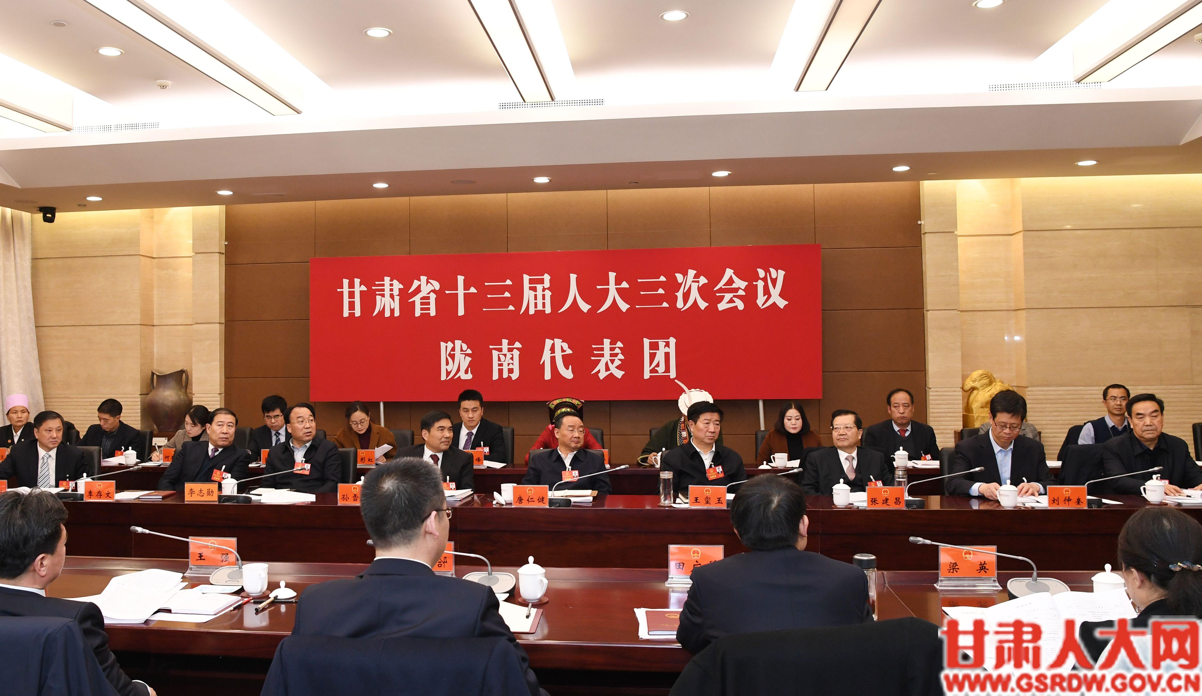 陇南市代表团审议政府工作报告